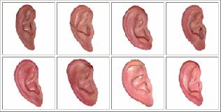 3d Hearing Test