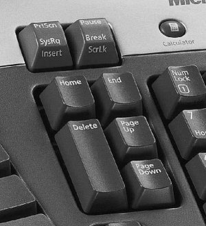 keyboard with mangled page-up and page-down key cluster