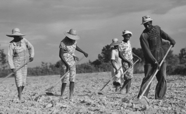 sharecroppers-small.jpg