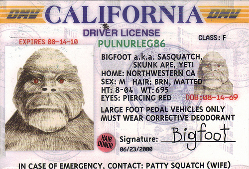 Bigfoot-drivers-license